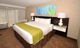 Radisson Resort Orlando-Celebr
