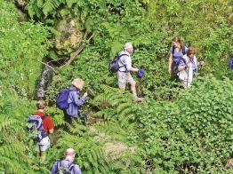 Rundreise Madeira - Wanderparadies im Atlantik