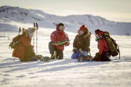 Rundreise Aktivurlaub Wintertraum in Grönland