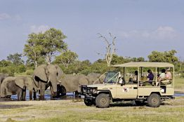 Rundreise Viktoria Fälle & Tierparadies Botswana