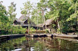Rundreise Ecuadors Amazonas - Sache Lodge