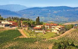 Tenuta Borgo Filicardo