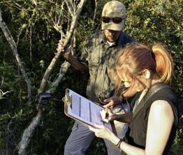 Rundreise Gondwana - den Busch erleben