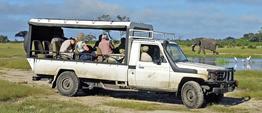 Rundreise Höhepunkte Botswanas