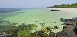 Rundreise Perle des Pazifiks: Isla Contadora (2 Nächte)