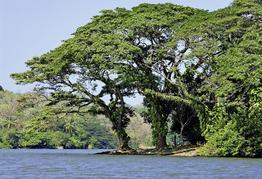 Rundreise Geheimnisvolles Costa Rica&Nicaragua: Mundo Verde