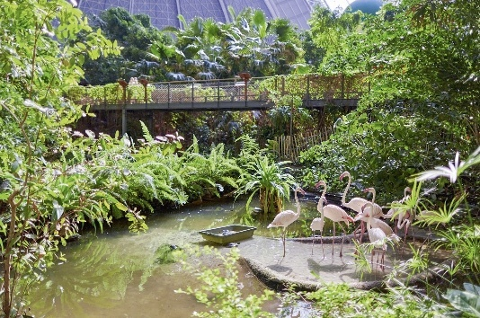 Tropical islands mobile homes krausnick buchen bei dertour - The mobile house on the unstable island ...