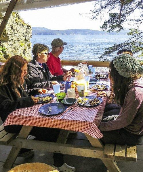 Rundreise Orca Camp Port Mcneill Buchen Bei Dertour