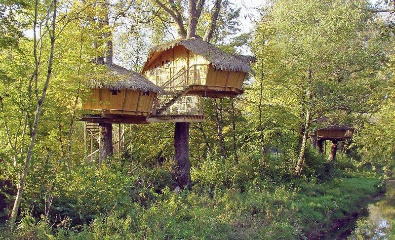 les cabanes des grands lacs chassey les montbozon buchen bei dertour. Black Bedroom Furniture Sets. Home Design Ideas